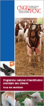 Programme national d'identification volontaire des chèvres - Essai des identifiants